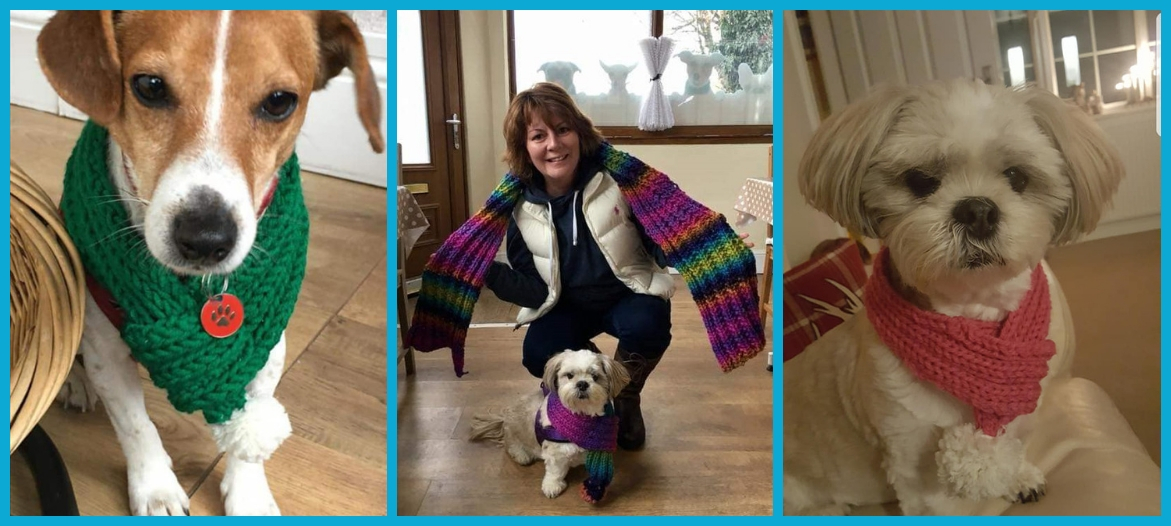PAWFECTLY COSY DOG SCARVES